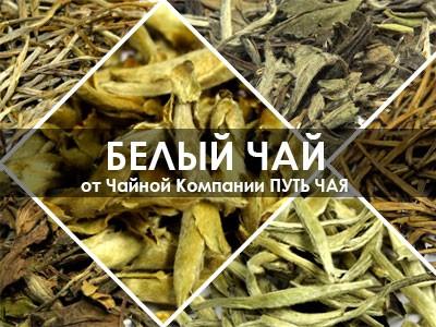 Купить Белый чай