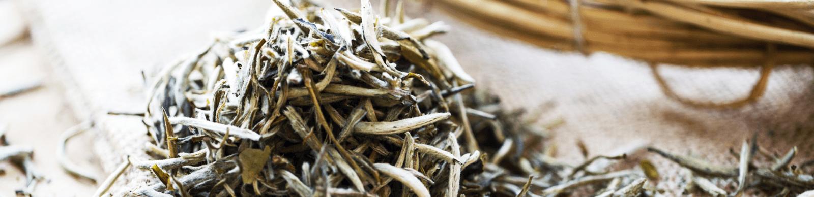 Купить Китайский чай Иглы оптом и в розницу - магазин чая ПУТЬ ЧАЯ .рф
