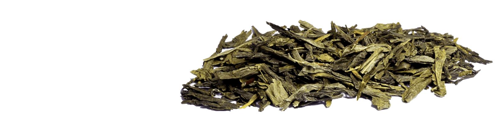 Вы можете купить оптом и в розницу премиальный Японский и Китайский классический зелёный чай Сенча в нашем интернет-магазине со склада в Москве, выбрав по ФОТО или заказав пробник, от Чайной Компании Путь Чая с доставкой по РФ и странам ТС.